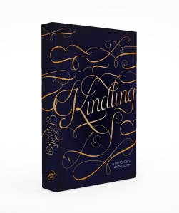 kindling-3D_Final_side